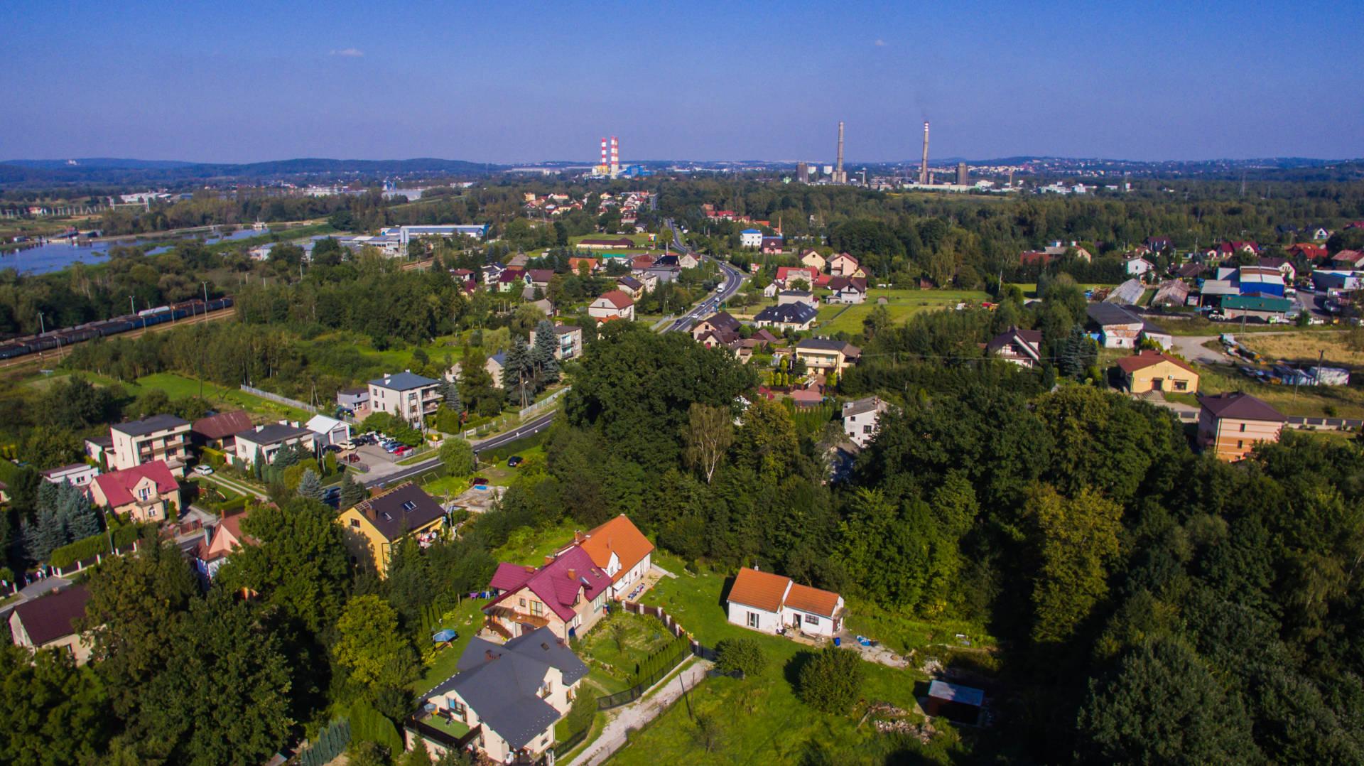 borek=panorama